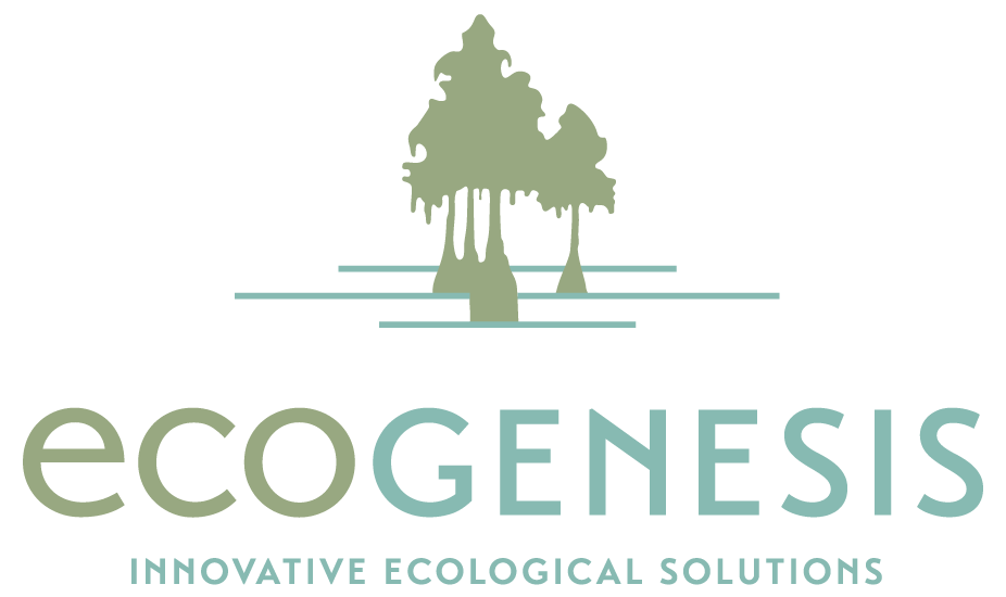EG_Logo-51